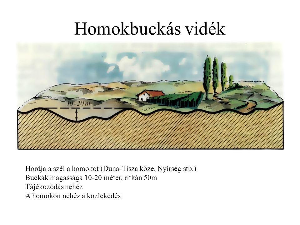 Homokbuckás vidék Hordja a szél a homokot (Duna-Tisza köze, Nyírség stb.) Buckák magassága 10-20 méter, ritkán 50m Tájékozódás nehéz A homokon nehéz a