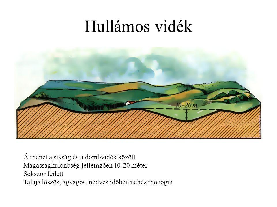 Átmenet a síkság és a dombvidék között Magasságkülönbség jellemzően 10-20 méter Sokszor fedett Talaja löszös, agyagos, nedves időben nehéz mozogni