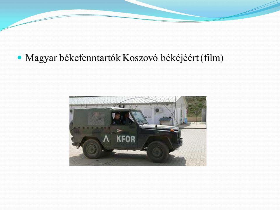 Magyar békefenntartók Koszovó békéjéért (film)