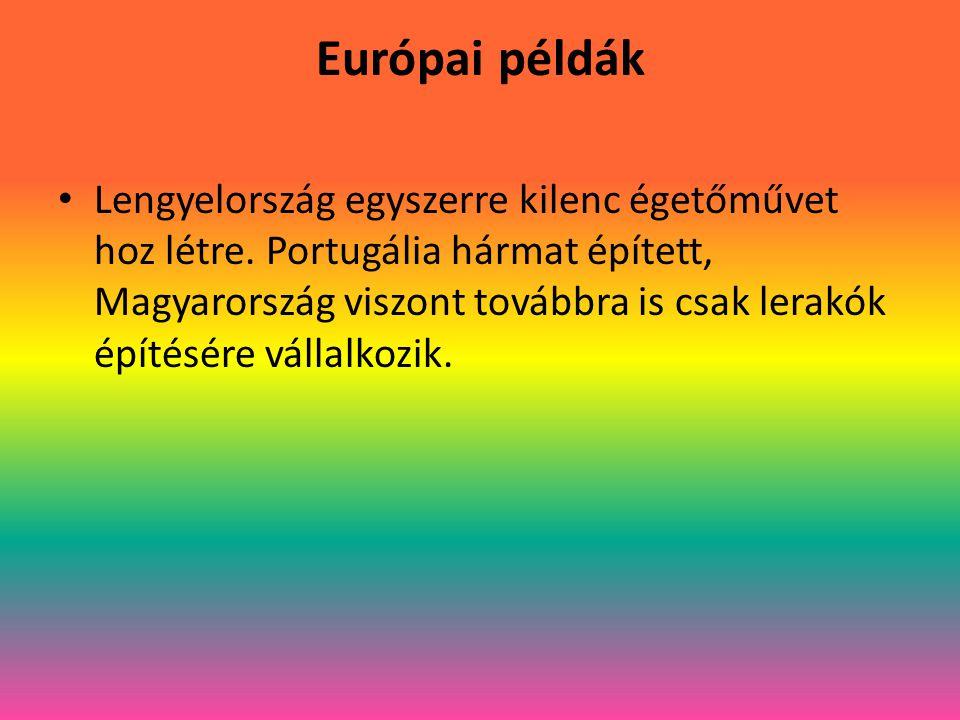 Európai példák Lengyelország egyszerre kilenc égetőművet hoz létre.