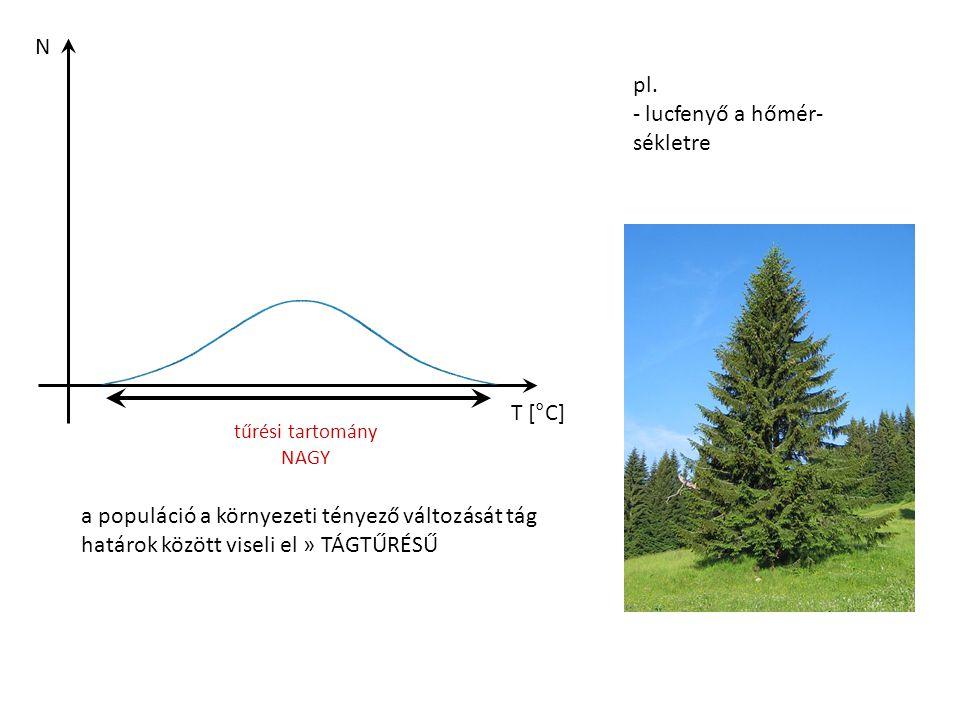 N T [°C] tűrési tartomány NAGY a populáció a környezeti tényező változását tág határok között viseli el » TÁGTŰRÉSŰ pl. - lucfenyő a hőmér- sékletre