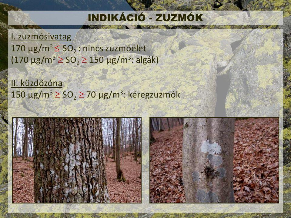INDIKÁCIÓ - ZUZMÓK I.