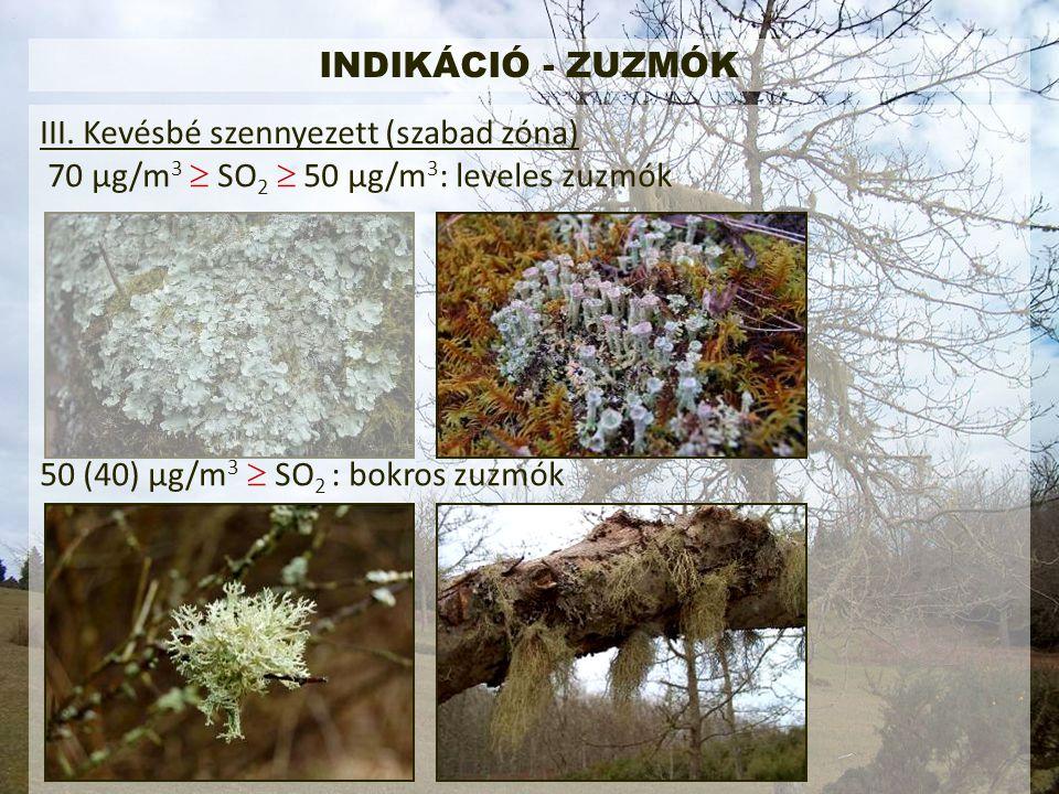 INDIKÁCIÓ - ZUZMÓK III.