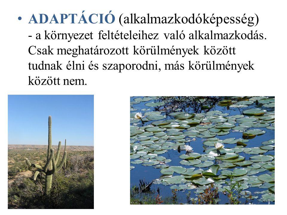 Specialisták: azok a fajok, amelyek sok könyezeti tényező szempontjából szűktűrésűek, ezért csak speciális környezetben tudnak megélni.