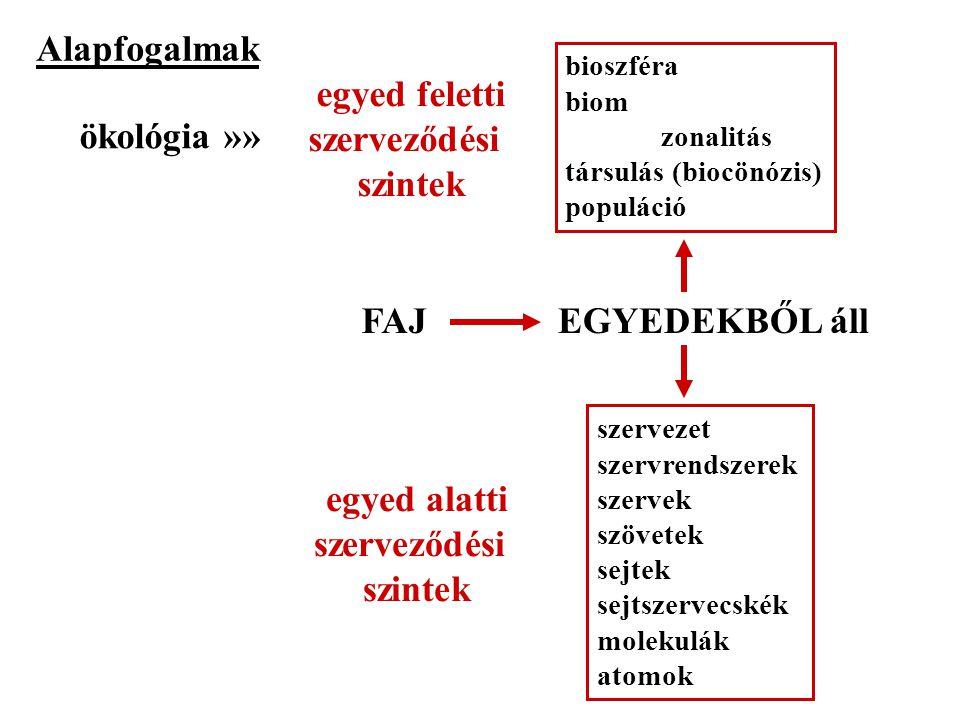 Alapfogalmak FAJEGYEDEKBŐL áll bioszféra biom zonalitás társulás (biocönózis) populáció szervezet szervrendszerek szervek szövetek sejtek sejtszervecs