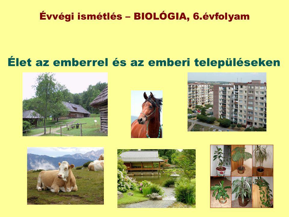 Élet az emberrel és az emberi településeken Évvégi ismétlés – BIOLÓGIA, 6.évfolyam
