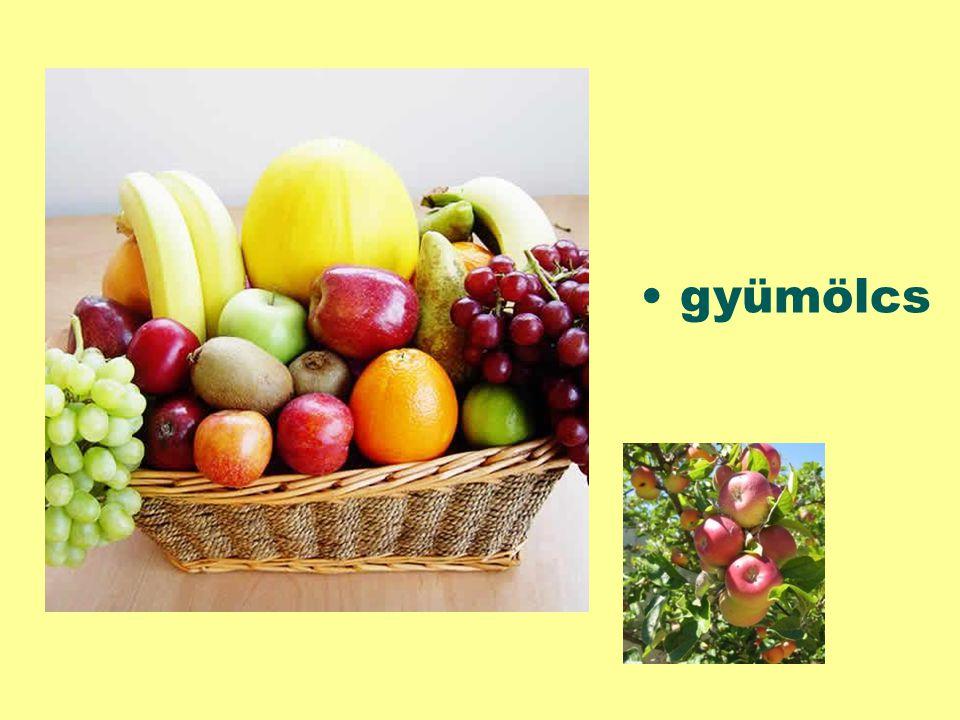 Tudod a választ. Milyen fajta gyümölcsöket nyújtanak nekünk a gyümölcsösök.