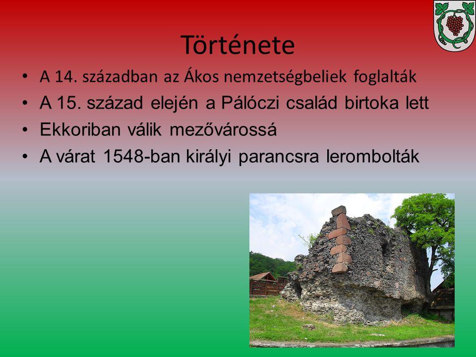 Története A 14. században az Ákos nemzetségbeliek foglalták A 15. század elején a Pálóczi család birtoka lett Ekkoriban válik mezővárossá A várat 1548