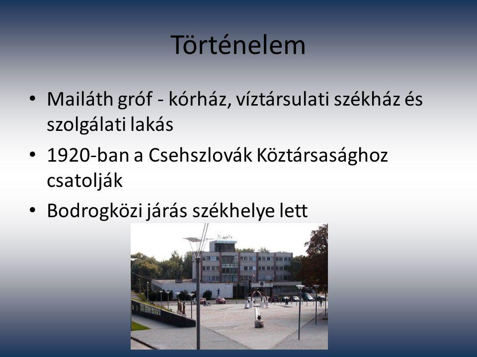 Történelem Mailáth gróf - kórház, víztársulati székház és szolgálati lakás 1920-ban a Csehszlovák Köztársasághoz csatolják Bodrogközi járás székhelye