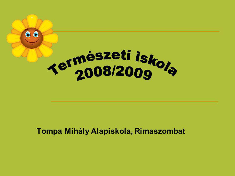 Tompa Mihály Alapiskola, Rimaszombat