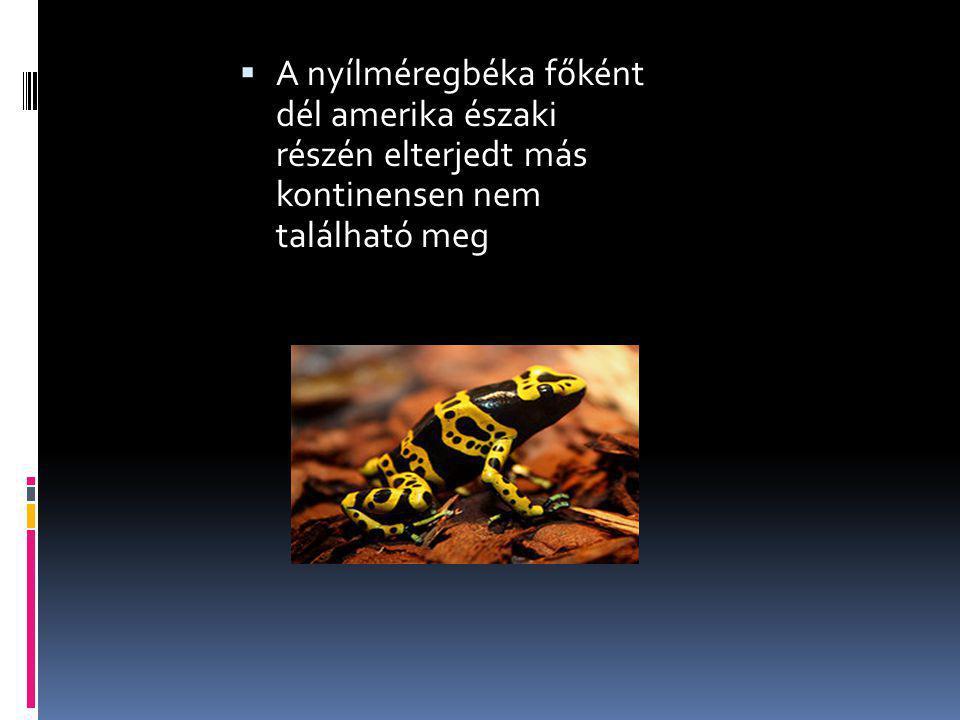  A nyílméregbéka főként dél amerika északi részén elterjedt más kontinensen nem található meg