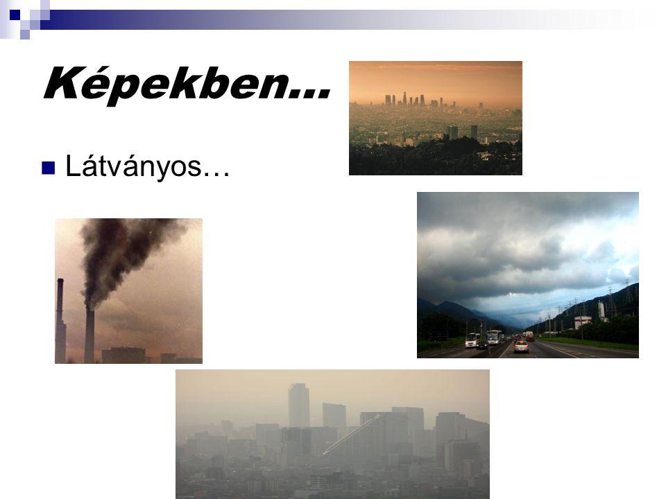 Káros hatásai: Szenteljünk több figyelmet a városi levegõ szennyezésnek.