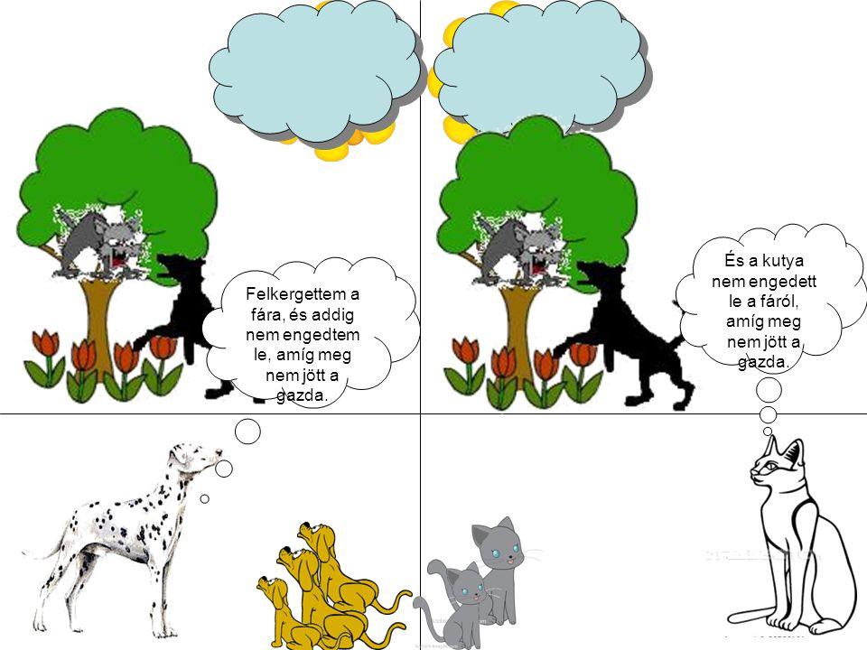 És a kutya nem engedett le a fáról, amíg meg nem jött a gazda.