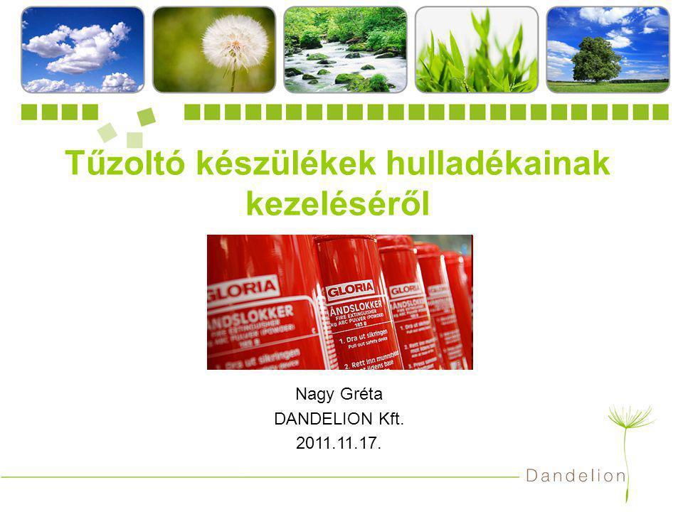 DANDELION Kft.12 Oltóanyagként alkalmazott fluortartalmú üvegházhatású gázok (F-gázok) Kiotói Jegyzőkönyv 842/2006/EK rendelet – egyes fluortartalmú üvegházhatású gázokról F-gázokBerendezésTilalom kezdete Perfluor karbonok CEA-308 CEA-410 Tűzvédelmi rendszerek és tűzoltó készülékek 2007.