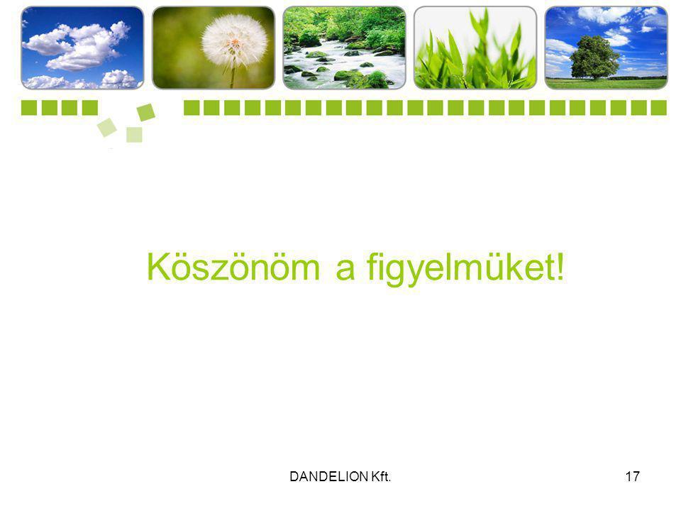 DANDELION Kft.17 Köszönöm a figyelmüket!