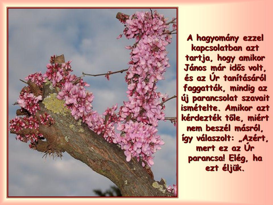 """János annyira meg van erről győződve, hogy egész levelében ezt ismételgeti: """"Aki szeretetben él, Istenben él, és Isten őbenne. """"Ha szeretjük egymást, Isten bennünk él…"""