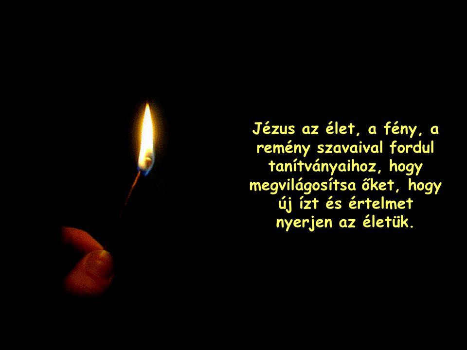 Jézus az élet, a fény, a remény szavaival fordul tanítványaihoz, hogy megvilágosítsa őket, hogy új ízt és értelmet nyerjen az életük.