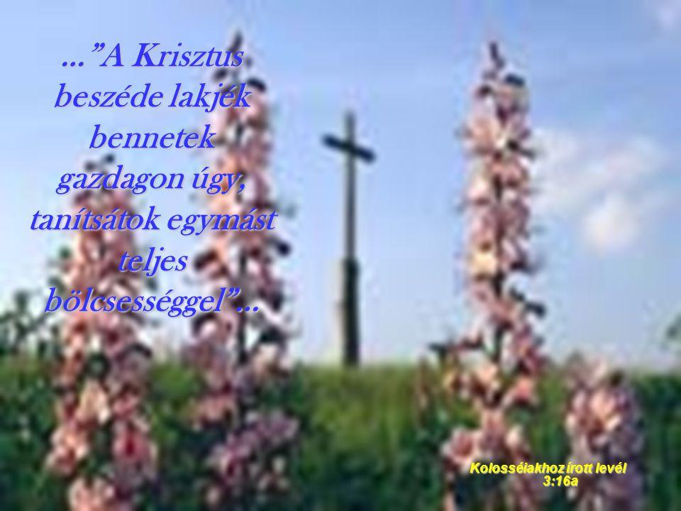 """…""""A Krisztus beszéde lakjék bennetek gazdagon úgy, tanítsátok egymást teljes bölcsességgel""""… Kolosséiakhoz írott levél 3:16a"""