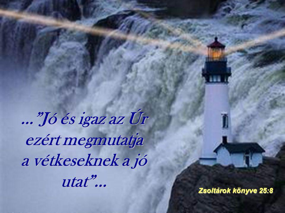 """…""""Jó és igaz az Úr ezért megmutatja a vétkeseknek a jó utat""""… Zsoltárok könyve 25:8"""