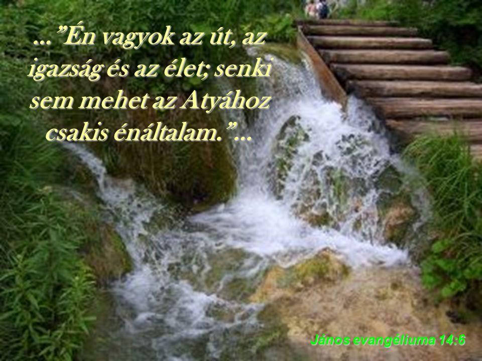 … Mindig azon az úton járjatok, amelyet Én mutatok nektek, hogy jó dolgotok legyen! … Jeremiás könyve 7:23