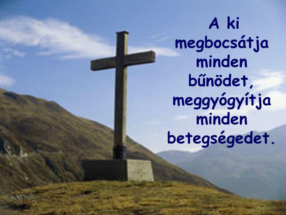 A ki megváltja életedet a koporsótól; kegyelemmel és irgalmassággal koronáz meg téged.