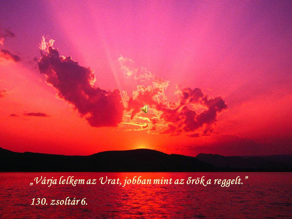 """""""Várja lelkem az Urat, jobban mint az őrök a reggelt."""" 130. zsoltár 6."""