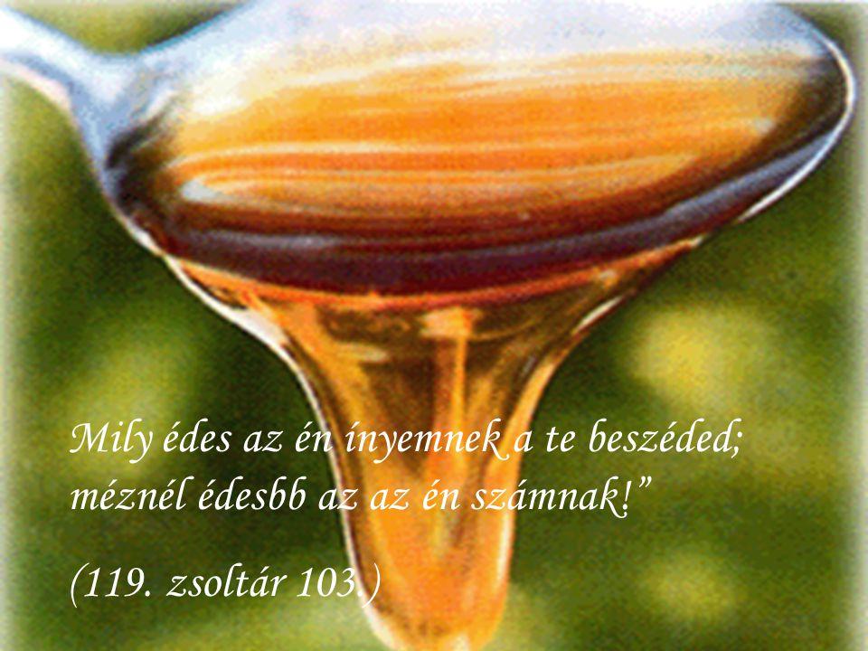 """Mily édes az én ínyemnek a te beszéded; méznél édesbb az az én számnak!"""" (119. zsoltár 103.)"""