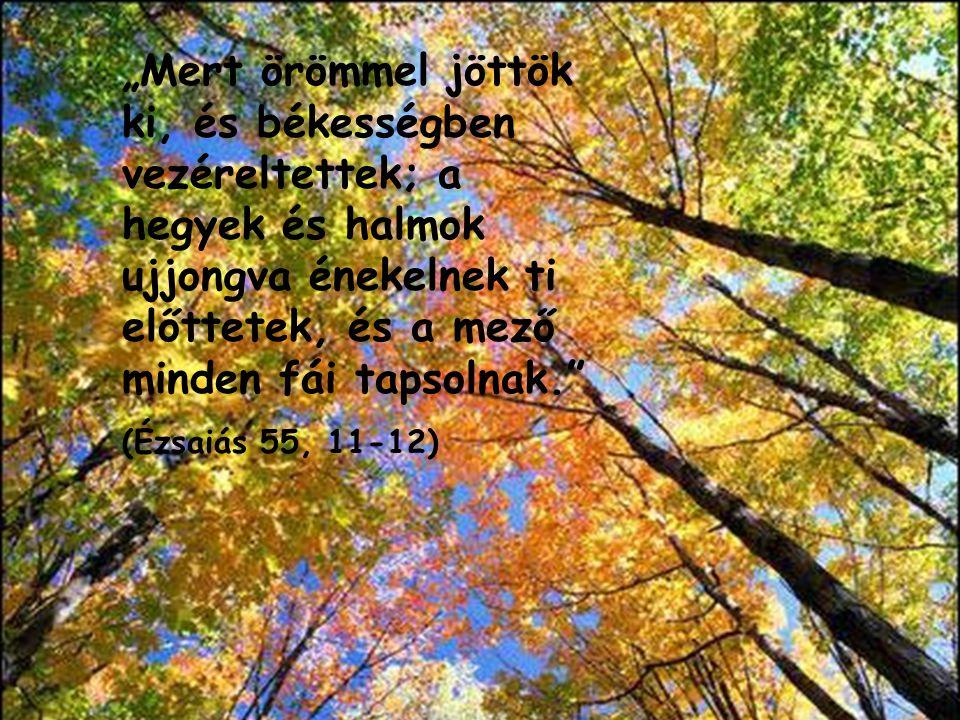 """""""Mert örömmel jöttök ki, és békességben vezéreltettek; a hegyek és halmok ujjongva énekelnek ti előttetek, és a mező minden fái tapsolnak."""" (Ézsaiás 5"""