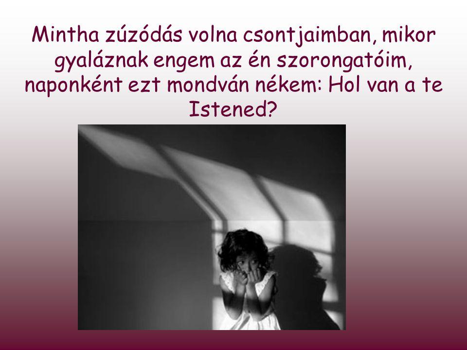 Mintha zúzódás volna csontjaimban, mikor gyaláznak engem az én szorongatóim, naponként ezt mondván nékem: Hol van a te Istened?