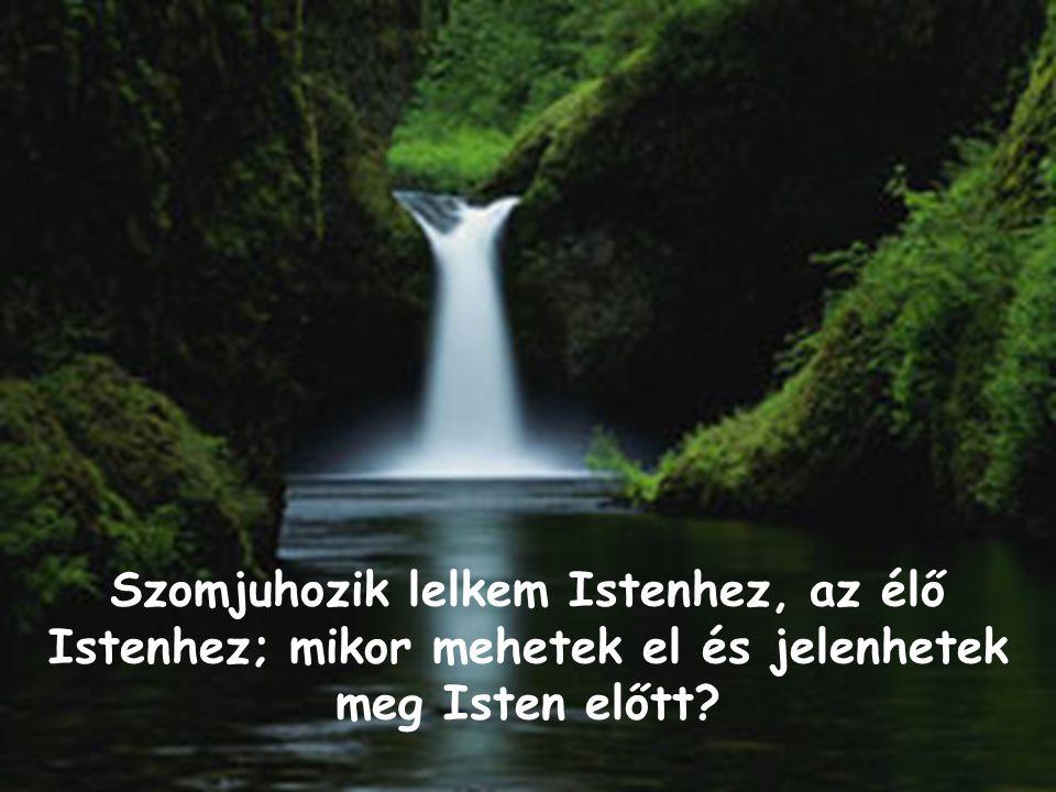Szomjuhozik lelkem Istenhez, az élő Istenhez; mikor mehetek el és jelenhetek meg Isten előtt?