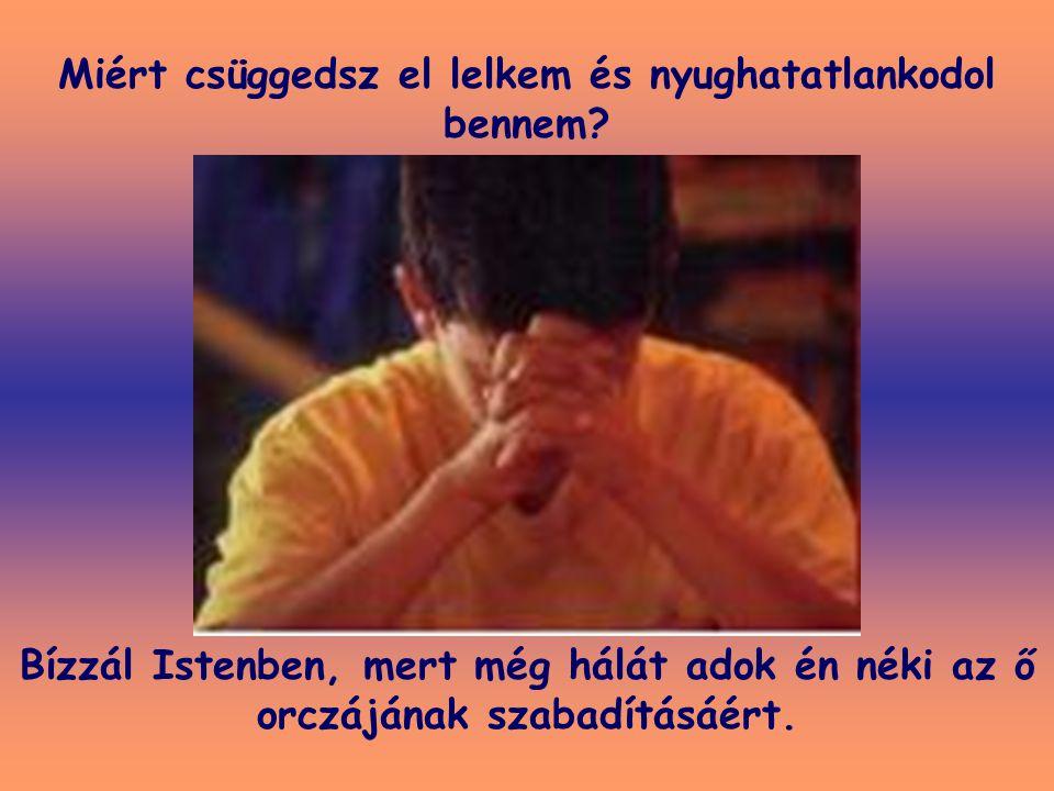 Miért csüggedsz el lelkem és nyughatatlankodol bennem? Bízzál Istenben, mert még hálát adok én néki az ő orczájának szabadításáért.