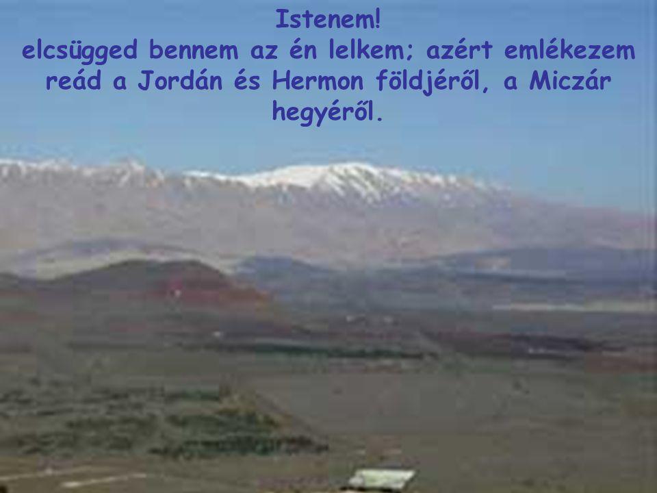 Istenem! elcsügged bennem az én lelkem; azért emlékezem reád a Jordán és Hermon földjéről, a Miczár hegyéről.