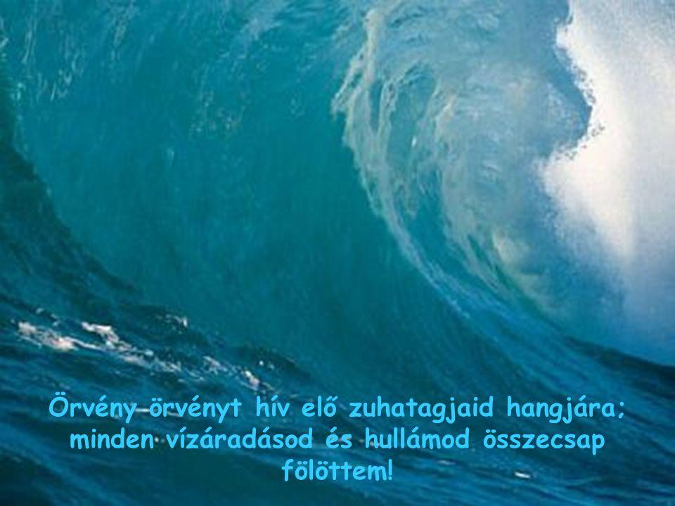 Örvény örvényt hív elő zuhatagjaid hangjára; minden vízáradásod és hullámod összecsap fölöttem!