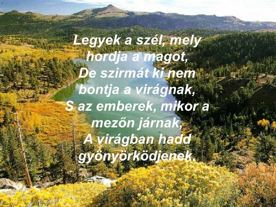 Legyek a szél, mely hordja a magot, De szirmát ki nem bontja a virágnak, S az emberek, mikor a mezőn járnak, A virágban hadd gyönyörködjenek.