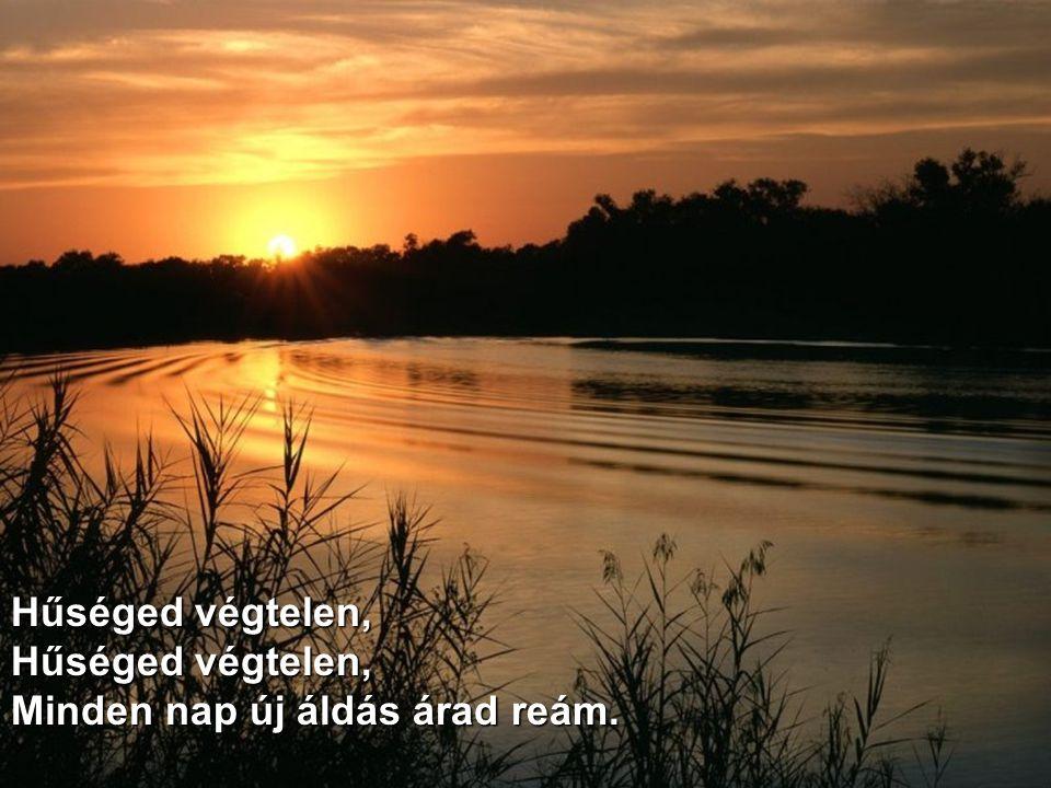 Erőt adsz mára, a holnapra reményt, Áldásod ontja rám bő árjait.