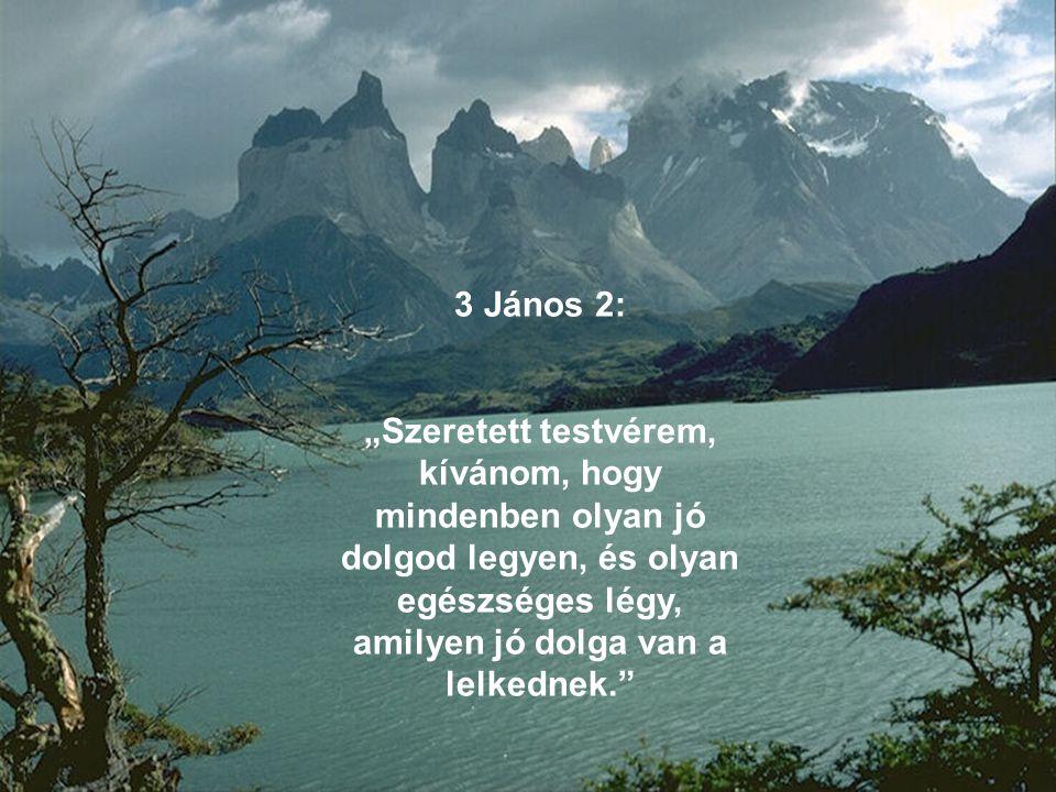 """3 János 2: """"Szeretett testvérem, kívánom, hogy mindenben olyan jó dolgod legyen, és olyan egészséges légy, amilyen jó dolga van a lelkednek."""""""