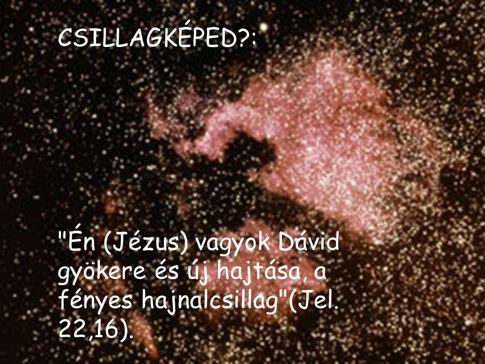 CSILLAGKÉPED : Én (Jézus) vagyok Dávid gyökere és új hajtása, a fényes hajnalcsillag (Jel. 22,16).
