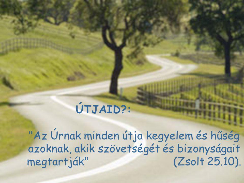ÚTJAID : Az Úrnak minden útja kegyelem és hűség azoknak, akik szövetségét és bizonyságait megtartják (Zsolt 25.10).