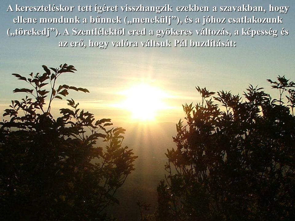 És ösztönzi, hogy olyan életre törekedjen, ahol tündökölnek az emberi és keresztény erények.