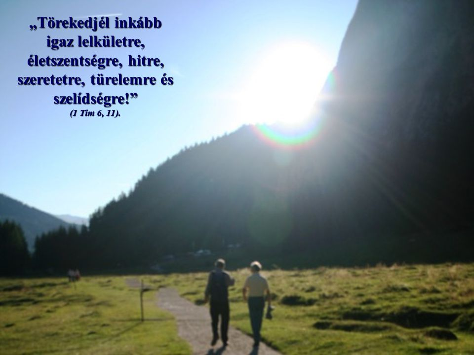 """A kereszteléskor tett ígéret visszhangzik ezekben a szavakban, hogy ellene mondunk a bűnnek (""""menekülj ), és a jóhoz csatlakozunk (""""törekedj )."""