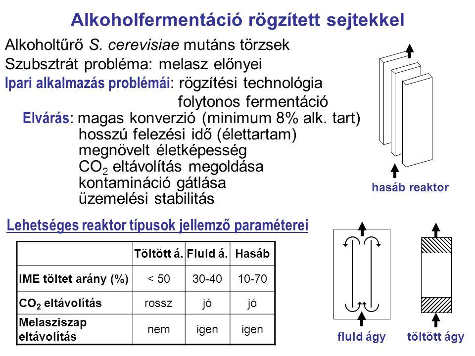 Alkoholfermentáció rögzített sejtekkel Alkoholtűrő S. cerevisiae mutáns törzsek Szubsztrát probléma: melasz előnyei Ipari alkalmazás problémái : rögzí