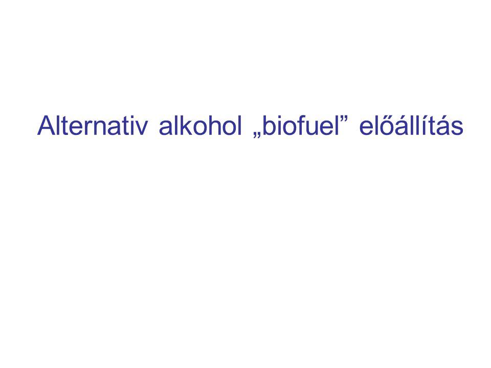 """Alternativ alkohol """"biofuel"""" előállítás"""