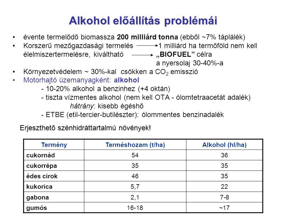 Alkohol előállítás problémái évente termelődő biomassza 200 milliárd tonna (ebből ~7% táplálék) Korszerű mezőgazdasági termelés 1 milliárd ha termőföl
