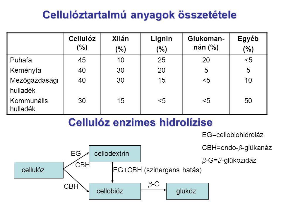 Cellulóztartalmú anyagok összetétele Cellulóz (%) Xilán (%) Lignin (%) Glukoman- nán (%) Egyéb (%) Puhafa Keményfa Mezőgazdasági hulladék Kommunális h