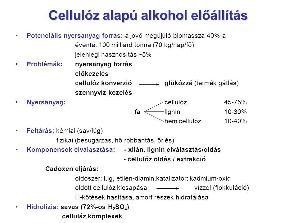 Cellulóz alapú alkohol előállítás Potenciális nyersanyag forrás: a jövő megújuló biomassza 40%-a évente: 100 milliárd tonna (70 kg/nap/fő) jelenlegi h