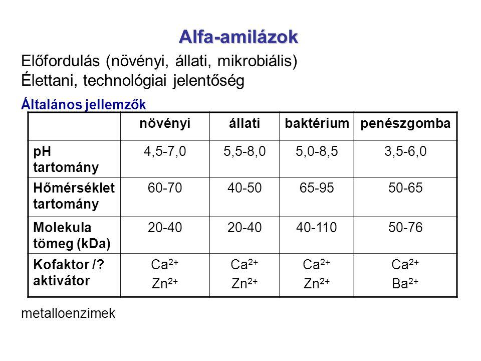 Alfa-amilázok Előfordulás (növényi, állati, mikrobiális) Élettani, technológiai jelentőség Általános jellemzők metalloenzimek növényiállatibaktériumpe