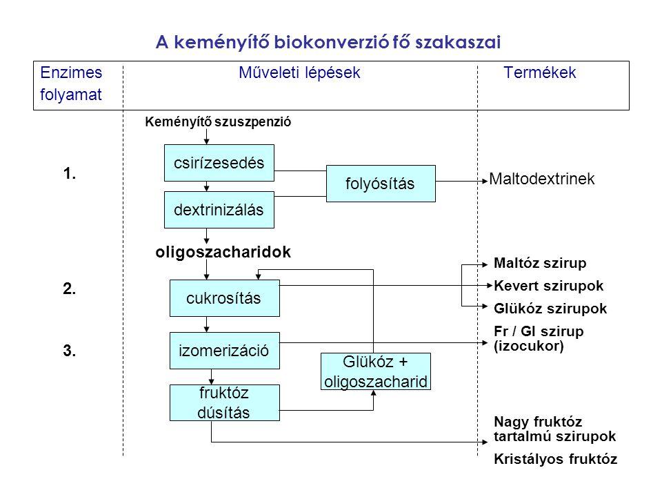A keményítő biokonverzió fő szakaszai EnzimesMűveleti lépésekTermékek folyamat csirízesedés dextrinizálás cukrosítás izomerizáció fruktóz dúsítás foly