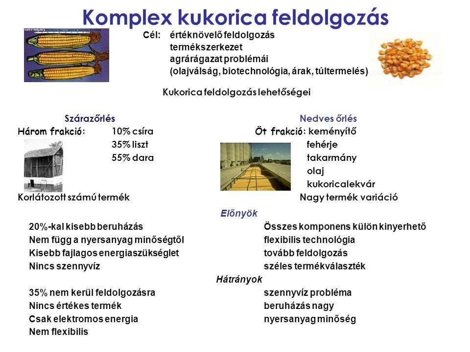 Komplex kukorica feldolgozás Cél: értéknövelő feldolgozás termékszerkezet agrárágazat problémái (olajválság, biotechnológia, árak, túltermelés) Kukori