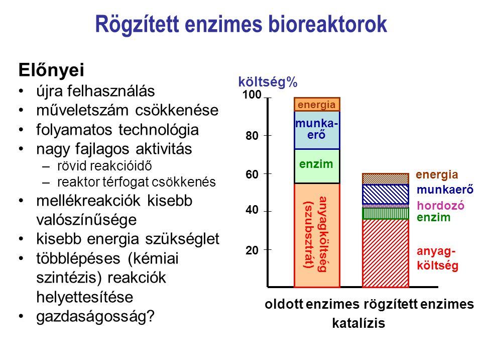 Rögzített enzimes bioreaktorok Előnyei újra felhasználás műveletszám csökkenése folyamatos technológia nagy fajlagos aktivitás –rövid reakcióidő –reak