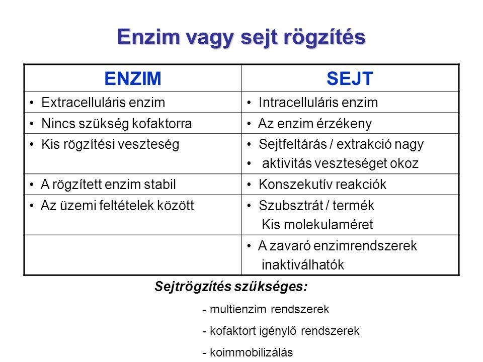 Enzim vagy sejt rögzítés ENZIMSEJT Extracelluláris enzim Intracelluláris enzim Nincs szükség kofaktorra Az enzim érzékeny Kis rögzítési veszteség Sejt